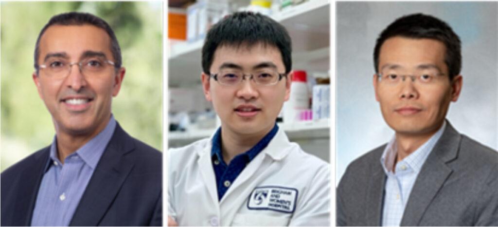 Omid C. Farokhzad, MD, MBA; Wei Tao, PhD; Jinjun Shi, PhD