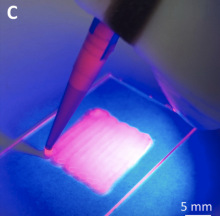 In Vivoprinting Of Growth Factor-eluting Adhesive Scaffolds Improves Wound Healing